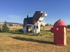 El hotel Dog Bark Park Inn, en Idaho, Estados Unidos