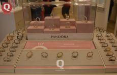 Gran variedad de anillos